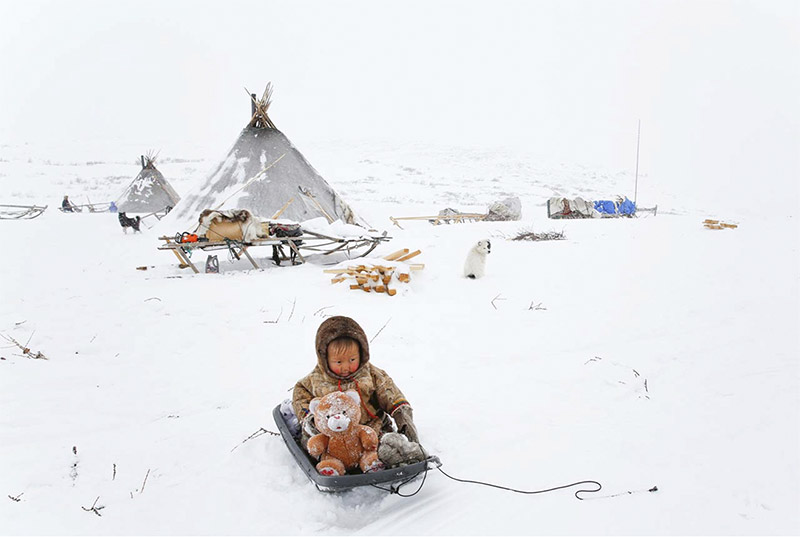 Russie, Oural Arctique, Yamal
