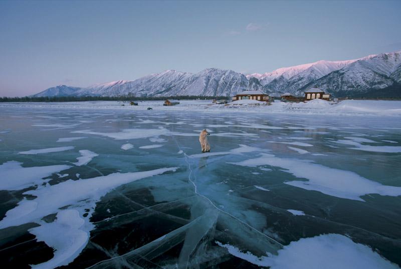Russie, Sibérie, réserve de Baïkal et Lena